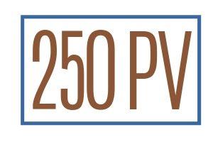 Team Beachbody 250 PV